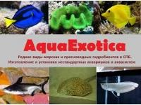 AquaExotica